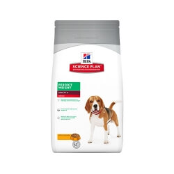 Nervio de toro deshidratado TRIXIE para perros
