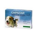 Elanco-Capstar pour Chiens Petits et Chats (1)