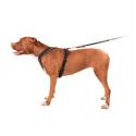 Royal canin Renal Veterinary diet boîte pour chien