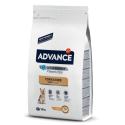 Affinity Advance-Yorkshire Terrier Adulte (1)