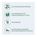 Nutribound complément nutritionnel pour chats en recuperación