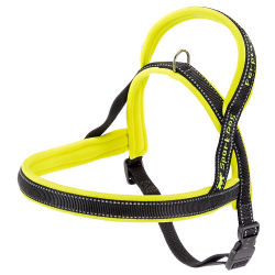 Arnes Sport Dog Yellow P Ferplast