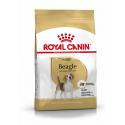 Royal Canin-Beagle Adulte (1)