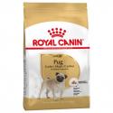 Royal Canin-Carlin Adulte (1)
