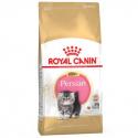 Royal Canin-Persan Chaton (1)