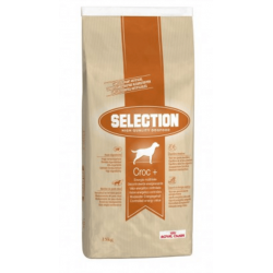 Royal Canin Selection Croc Plus + High Quality